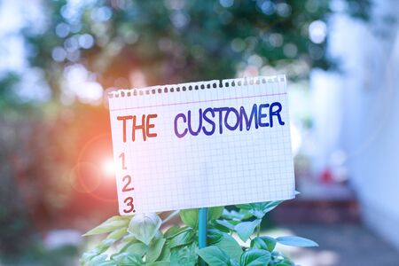 Text sign showing The Customer. Business photo showcasing demonstrating or organization that buys goods or services from a store Plain empty paper attached to a stick and placed in the green leafy plants Stockfoto