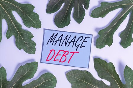 Writing note showing Manage Debt. Business concept for unofficial agreement with unsecured creditors for repayment Leaves surrounding notepaper above empty soft pastel table 스톡 콘텐츠
