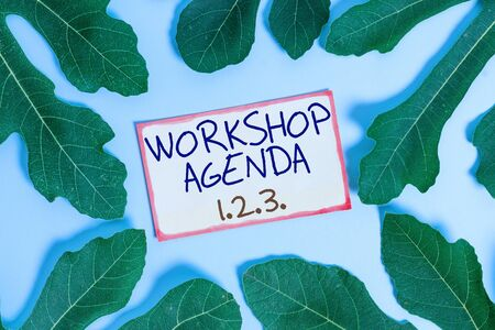 Text sign showing Workshop Agenda 123. Business photo showcasing help to ensure that Event Stays on Schedule Leaves surrounding notepaper above an empty soft pastel table as background