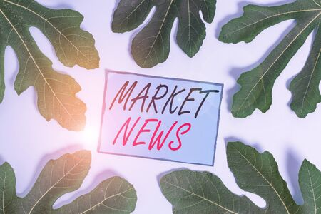 Writing note showing Market News. Business concept for Commercial Notice Trade Report Market Update Corporate Insight Leaves surrounding notepaper above empty soft pastel table Banco de Imagens