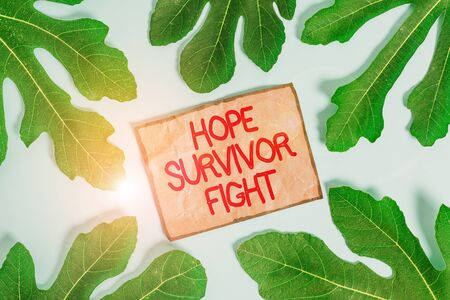 Writing note showing Hope Survivor Fight. Business concept for stand against your illness be fighter stick to dreams Leaves surrounding notepaper above empty soft pastel table Standard-Bild