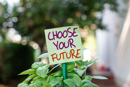 Handwriting text writing Choose Your Future. Conceptual photo Choices make today will define the outcome of tomorrow Plain empty paper attached to a stick and placed in the green leafy plants Фото со стока