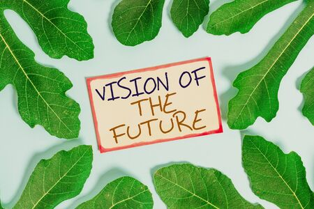 Text sign showing Vision Of The Future. Business photo showcasing Seeing something Ahead a Clear Guide of Action Leaves surrounding notepaper above an empty soft pastel table as background
