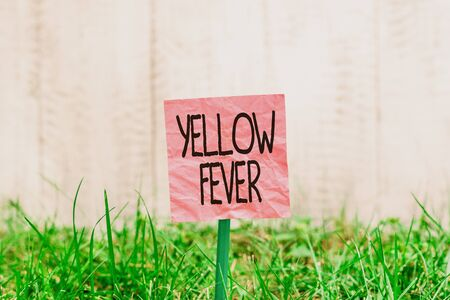 Conceptual hand writing showing Yellow Fever. Concept meaning tropical virus disease affecting the liver and kidneys Plain paper attached to stick and placed in the grassy land