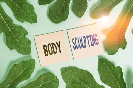 Text sign showing Body Sculpting. Business photo text activity of increasing the body s is visible muscle tone Leaves surrounding notepaper above an empty soft pastel table as background