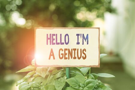 Text sign showing Hello I M A Genius. Business photo text Introduce yourself as over average demonstrating to others Plain empty paper attached to a stick and placed in the green leafy plants Stock fotó