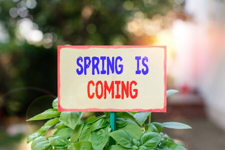 Text sign showing Spring Is Coming. Business photo text After winter season is approaching Enjoy nature flowers sun Plain empty paper attached to a stick and placed in the green leafy plants