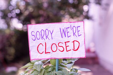 Conceptual hand writing showing Sorry We Re Closed. Concept meaning Expression of Regret Disappointment Not Open Sign Plain paper attached to stick and placed in the grassy land