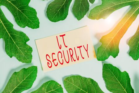 Writing note showing It Security. Business concept for protection of data or digital asset against unauthorized access Leaves surrounding notepaper above empty soft pastel table