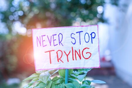 Conceptual hand writing showing Never Stop Trying. Concept meaning Do not give up Continue to Try Again Keep on Doing Plain paper attached to stick and placed in the grassy land