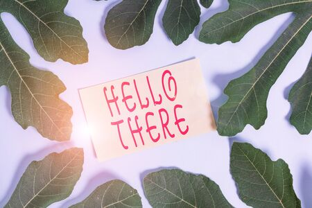 Writing note showing Hello There. Business concept for a way to get someone s is attention more strongly upon greeting Leaves surrounding notepaper above empty soft pastel table