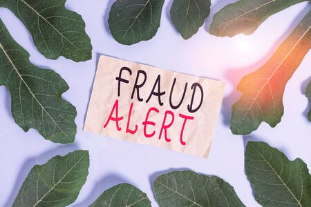 Conceptual hand writing showing Fraud Alert. Concept meaning security alert placed on credit card account for stolen identity Leaves surrounding notepaper above empty soft pastel table