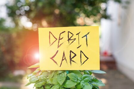 Handwriting text writing Debit Card. Conceptual photo card that deducts money directly from a demonstrating s is checking account Plain empty paper attached to a stick and placed in the green leafy plants