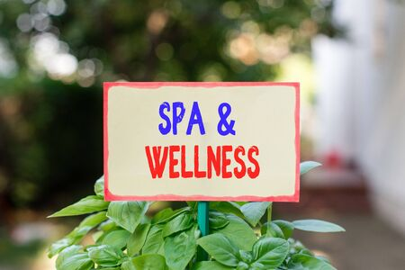 Text sign showing Spa And Wellness. Business photo text Place where showing go to improve their health Relaxation Plain empty paper attached to a stick and placed in the green leafy plants