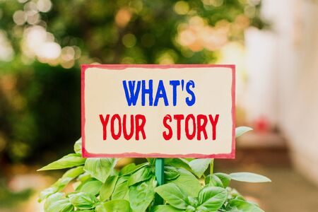 Text sign showing What S Your Story. Business photo text asking someone tell me about himself Share experience Plain empty paper attached to a stick and placed in the green leafy plants Stock fotó