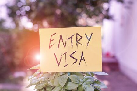 Handwriting text writing Entry Visa. Conceptual photo permission to enter a country of which you are not a national Plain empty paper attached to a stick and placed in the green leafy plants Stok Fotoğraf