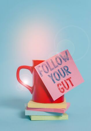 Conceptual hand writing showing Follow Your Gut. Concept meaning Listen to intuition feelings emotions conscious perception Coffee cup colored sticky note stacked pads plain background Stok Fotoğraf