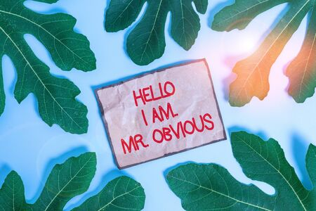 Writing note showing Hello I Am Mrobvious. Business concept for introducing yourself as pouplar or famous demonstrating Leaves surrounding notepaper above empty soft pastel table