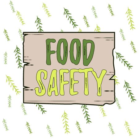 Handwriting text Food Safety. Conceptual photo conditions and practices that preserve the quality of food Wooden square plank empty frame slots grooves wood panel colored board lumber