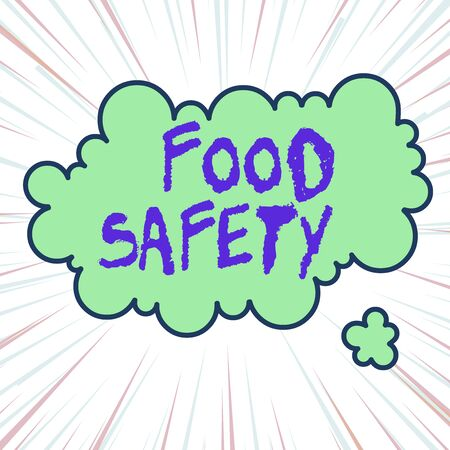 Handwriting text writing Food Safety. Conceptual photo conditions and practices that preserve the quality of food Asymmetrical uneven shaped format pattern object outline multicolour design