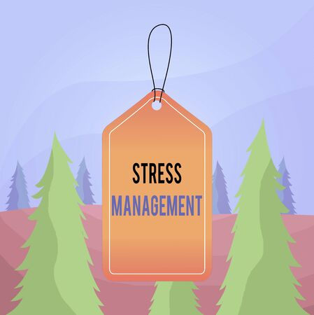 Word writing text Stress Management. Business photo showcasing method of limiting stress and its effects by learning ways Empty tag blank space colorful background label rectangle attached string 스톡 콘텐츠