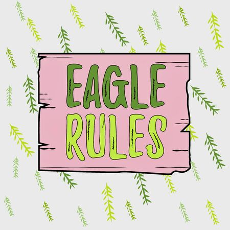 Handwriting text Eagle Rules. Conceptual photo a huge set of design rules which your layout needs to pass Wooden square plank empty frame slots grooves wood panel colored board lumber Stockfoto