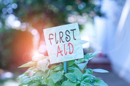 Text sign showing First Aid. Business photo text Practise of healing small cuts that no need for medical training Plain empty paper attached to a stick and placed in the green leafy plants Stock Photo