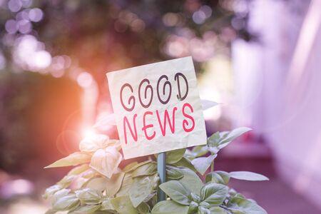 Signe texte montrant de bonnes nouvelles. Texte photo d'entreprise Quelqu'un ou quelque chose de positif Encourager l'élévation ou le désirable Papier vide ordinaire attaché à un bâton et placé dans les plantes à feuilles vertes Banque d'images