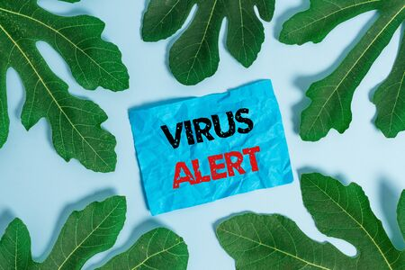 Conceptual hand writing showing Virus Alert. Concept meaning message warning of a nonexistent computer virus threat Leaves surrounding notepaper above empty soft pastel table