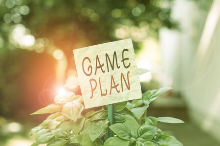 Text sign showing Game Plan. Business photo text strategy worked out in advance in sport politics or business Plain empty paper attached to a stick and placed in the green leafy plants Stock fotó