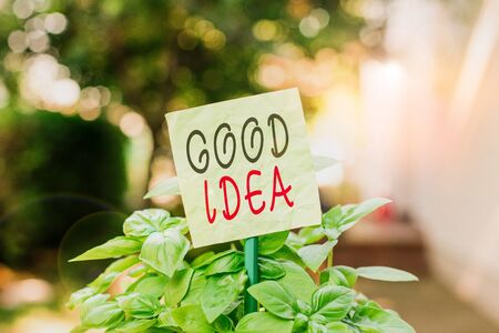 Text sign showing Good Idea. Business photo text an excellent suggestion and plan for achieving something Plain empty paper attached to a stick and placed in the green leafy plants
