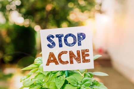 Word writing text Stop Acne. Business photo showcasing control the occurrence of inflamed sebaceous glands in the skin Plain empty paper attached to a stick and placed in the green leafy plants