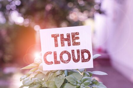 Word writing text The Cloud. Business photo showcasing Programs used in Storing Accessing data over the internet Plain empty paper attached to a stick and placed in the green leafy plants Stock fotó