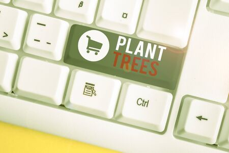 Conceptual hand writing showing Plant Trees. Concept meaning process of planting a tree for land cultivation and forestry White pc keyboard with note paper above the white background
