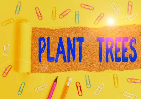 Conceptual hand writing showing Plant Trees. Concept meaning process of planting a tree for land cultivation and forestry Stationary and torn cardboard on a wooden classic table backdrop Zdjęcie Seryjne