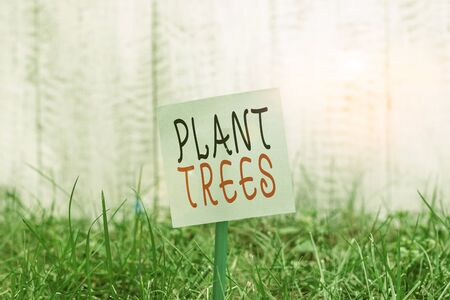 Text sign showing Plant Trees. Business photo showcasing process of planting a tree for land cultivation and forestry Plain empty paper attached to a stick and placed in the green grassy land