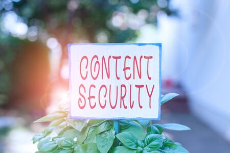 Writing note showing Content Security. Business concept for the protection against deliberate threats to content Plain paper attached to stick and placed in the grassy land