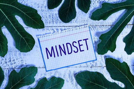 Text sign showing Mindset. Business photo showcasing A standard thought of a demonstrating of what he orshe will be done