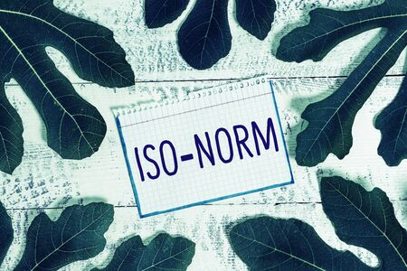 Text sign showing Iso Norm. Business photo showcasing An accepted standard or a way of doing things most showing agreed