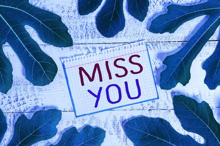 Text sign showing Miss You. Business photo showcasing Longing for an important demonstrating in your life for a period of time Archivio Fotografico