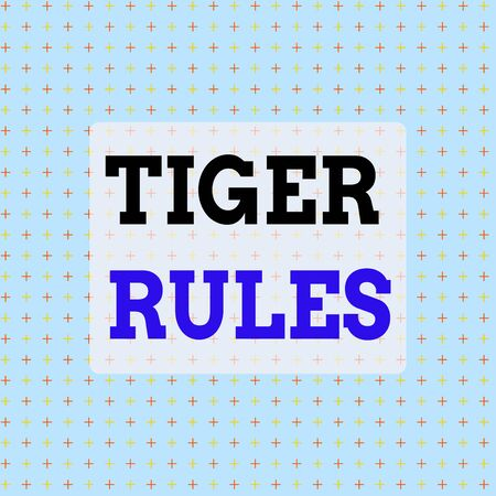 Conceptual hand writing showing Tiger Rules. Concept meaning Willpower and demonstratingal strength Resistance to imperial rule Infinite Endless Aligned Two Tone CrossStitch Plus Sign Pattern 스톡 콘텐츠