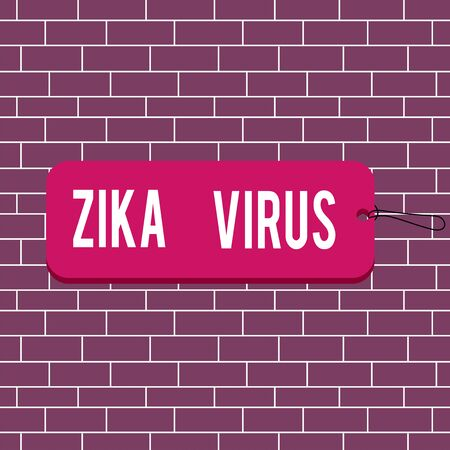 Text sign showing Zika Virus. Business photo text caused by a virus transmitted primarily by Aedes mosquitoes Label tag badge rectangle shaped empty space string colorful background