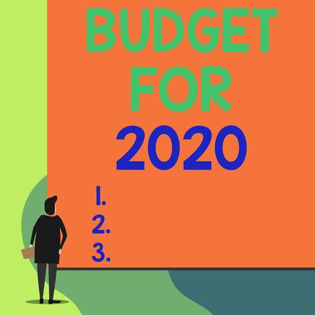 Writing note showing Budget For 2020. Business concept for An written estimates of income and expenditure for 2020 Back view young woman watching blank big rectangle