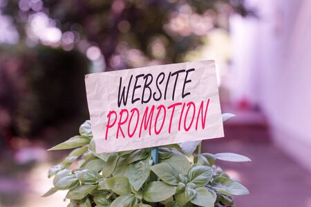 Word writing text Website Promotion. Business photo showcasing increase exposure of a website to bring more visitors Plain empty paper attached to a stick and placed in the green leafy plants 版權商用圖片