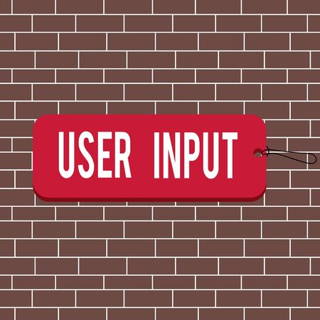 Text sign showing User Input. Business photo text Any information or data that is sent to a computer for processing Label tag badge rectangle shaped empty space string colorful background Reklamní fotografie