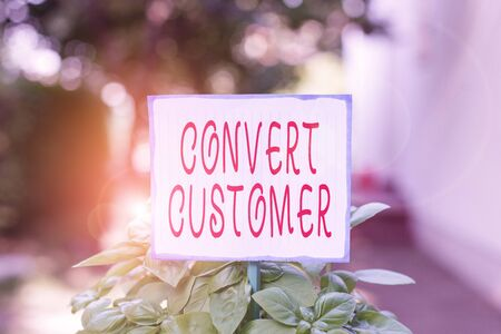 Writing note showing Convert Customer. Business concept for the percentage of visitors who take the desired action Plain paper attached to stick and placed in the grassy land 免版税图像