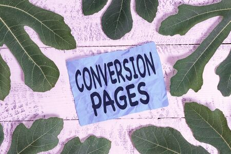 Conceptual hand writing showing Conversion Pages. Concept meaning appears in response to clicking on a search engine Leaves surrounding notepaper above a classic wooden table 写真素材