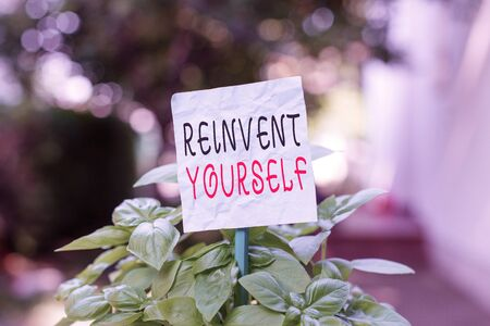 Word writing text Reinvent Yourself. Business photo showcasing to do something differently from before Change behavior Plain empty paper attached to a stick and placed in the green leafy plants