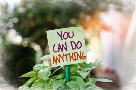 Handwriting text writing You Can Do Anything. Conceptual photo Motivation for doing something Believe in yourself Plain empty paper attached to a stick and placed in the green leafy plants