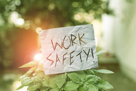 Text sign showing Work Safety. Business photo showcasing policies and procedures in place to ensure health of employees Plain empty paper attached to a stick and placed in the green leafy plants Reklamní fotografie
